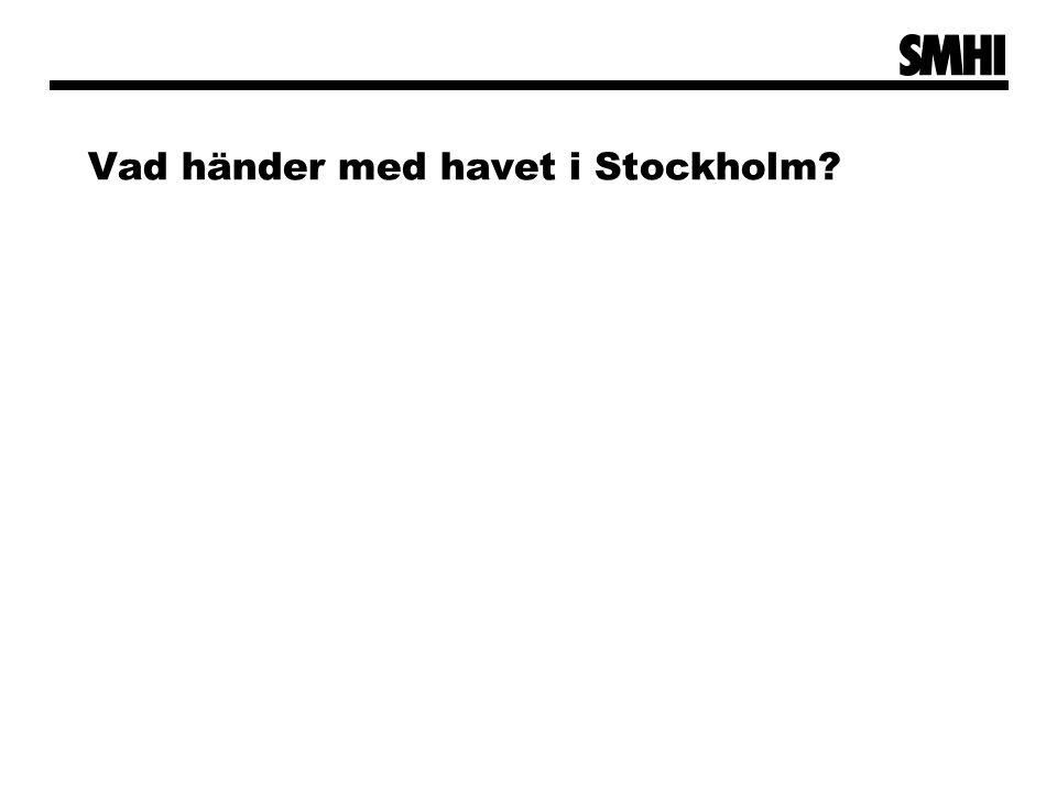 Vad händer med havet i Stockholm?