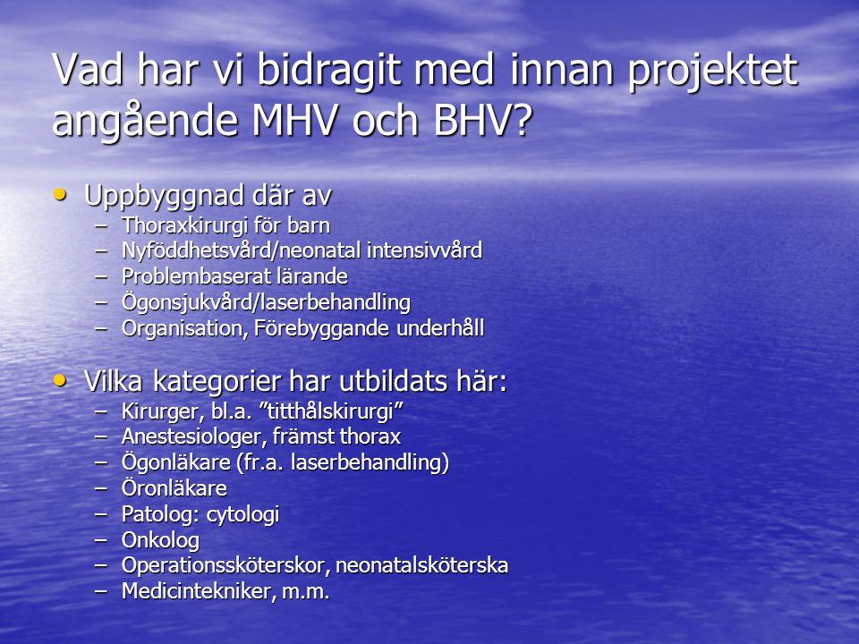 Vad har vi bidragit med innan projektet angående MHV och BHV.