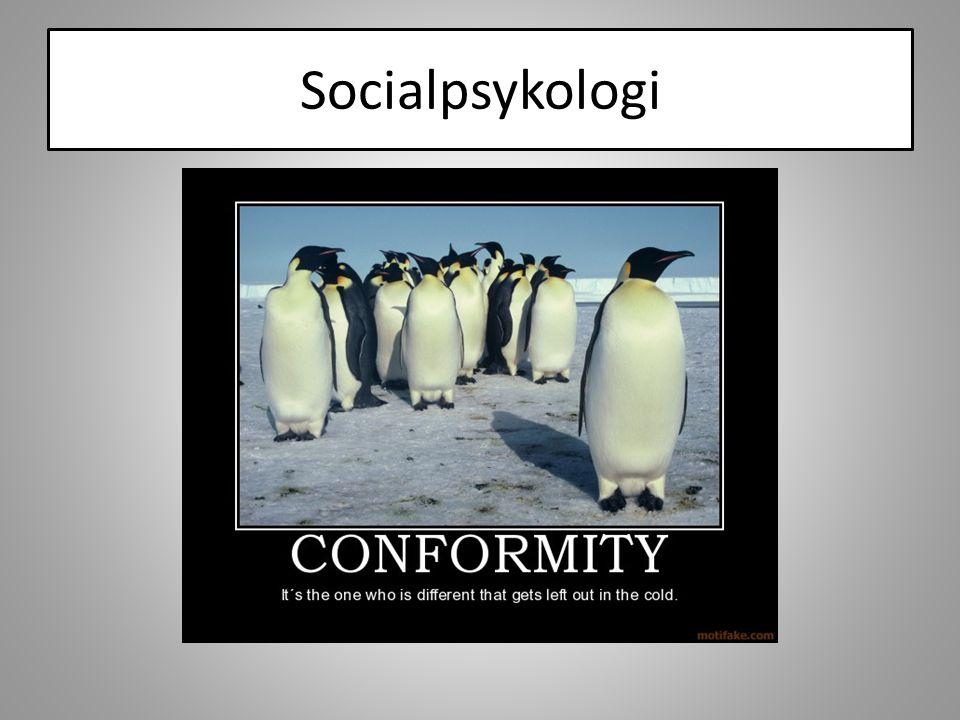 Gren inom beteendevetenskaperna som studerar förhållandet mellan individ och social omgivning.