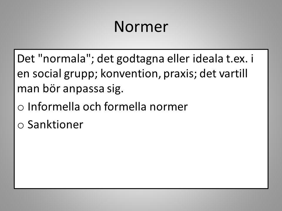 Normer Det normala ; det godtagna eller ideala t.ex.