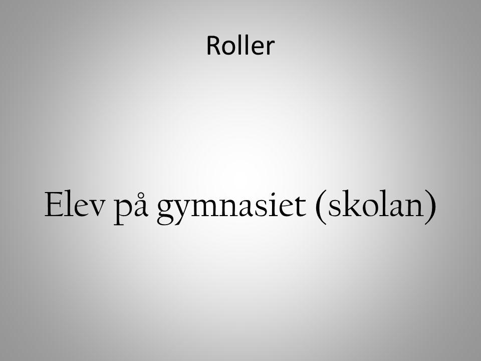 Rollkonflikt – flera samtidiga roller