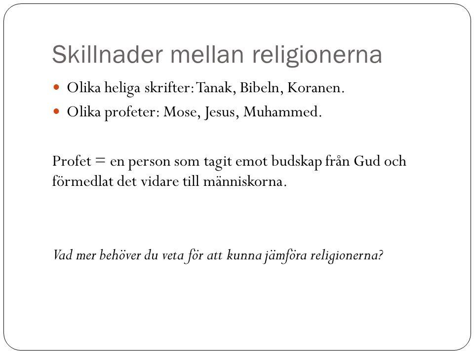 Skillnader mellan religionerna Olika heliga skrifter: Tanak, Bibeln, Koranen.