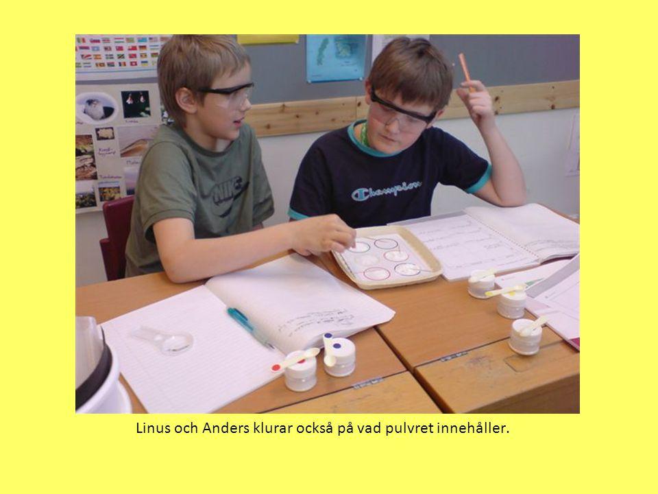 Linus och Anders klurar också på vad pulvret innehåller.