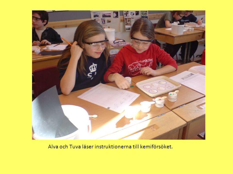 Alva och Tuva läser instruktionerna till kemiförsöket.