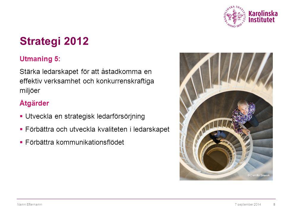 Strategi 2012 Utmaning 5: Stärka ledarskapet för att åstadkomma en effektiv verksamhet och konkurrenskraftiga miljöer Åtgärder  Utveckla en strategis