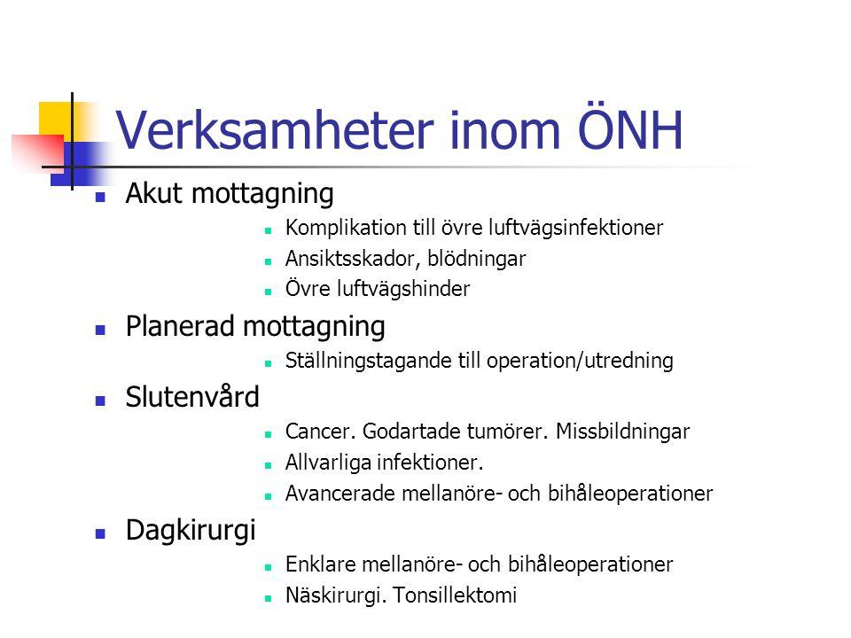 Verksamheter inom ÖNH Akut mottagning Komplikation till övre luftvägsinfektioner Ansiktsskador, blödningar Övre luftvägshinder Planerad mottagning Ställningstagande till operation/utredning Slutenvård Cancer.