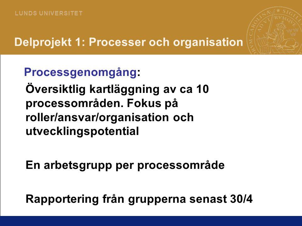 12 L U N D S U N I V E R S I T E T Delprojekt 1: Processer och organisation Processgenomgång: Översiktlig kartläggning av ca 10 processområden. Fokus
