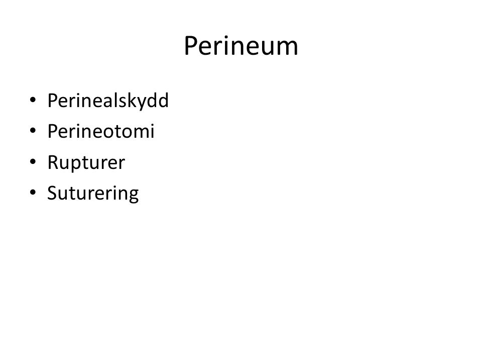 Perineum Perinealskydd Perineotomi Rupturer Suturering