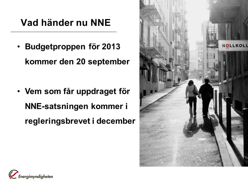 Vad händer nu NNE Budgetproppen för 2013 kommer den 20 september Vem som får uppdraget för NNE-satsningen kommer i regleringsbrevet i december