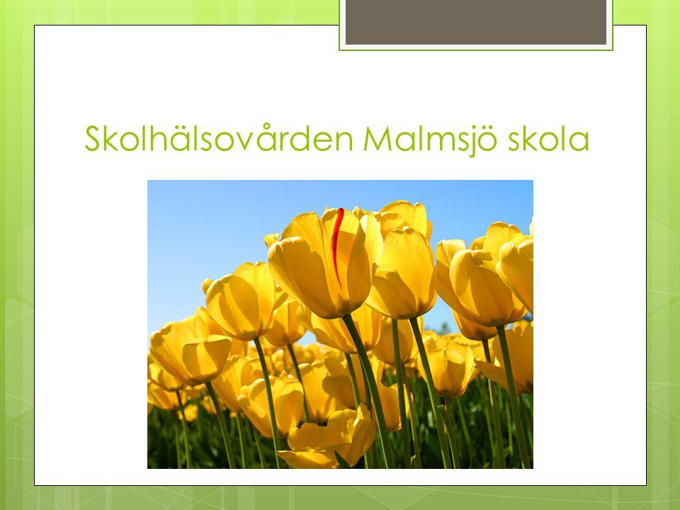 Skolhälsovården Malmsjö skola