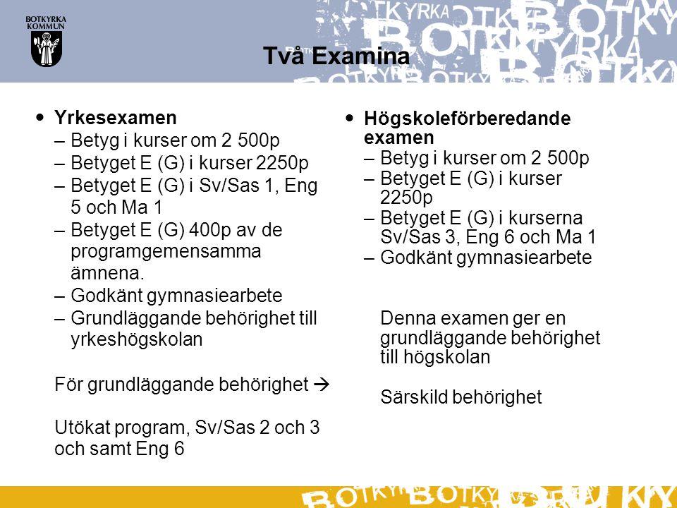 Två Examina Yrkesexamen –Betyg i kurser om 2 500p –Betyget E (G) i kurser 2250p –Betyget E (G) i Sv/Sas 1, Eng 5 och Ma 1 –Betyget E (G) 400p av de pr