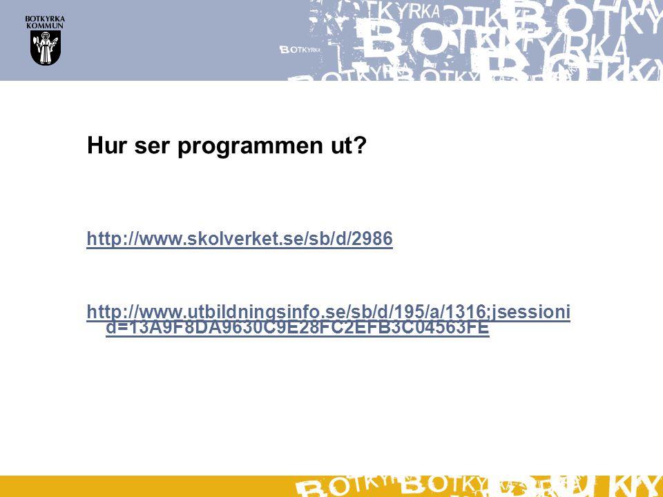 Hur ser programmen ut? http://www.skolverket.se/sb/d/2986 http://www.utbildningsinfo.se/sb/d/195/a/1316;jsessioni d=13A9F8DA9630C9E28FC2EFB3C04563FE