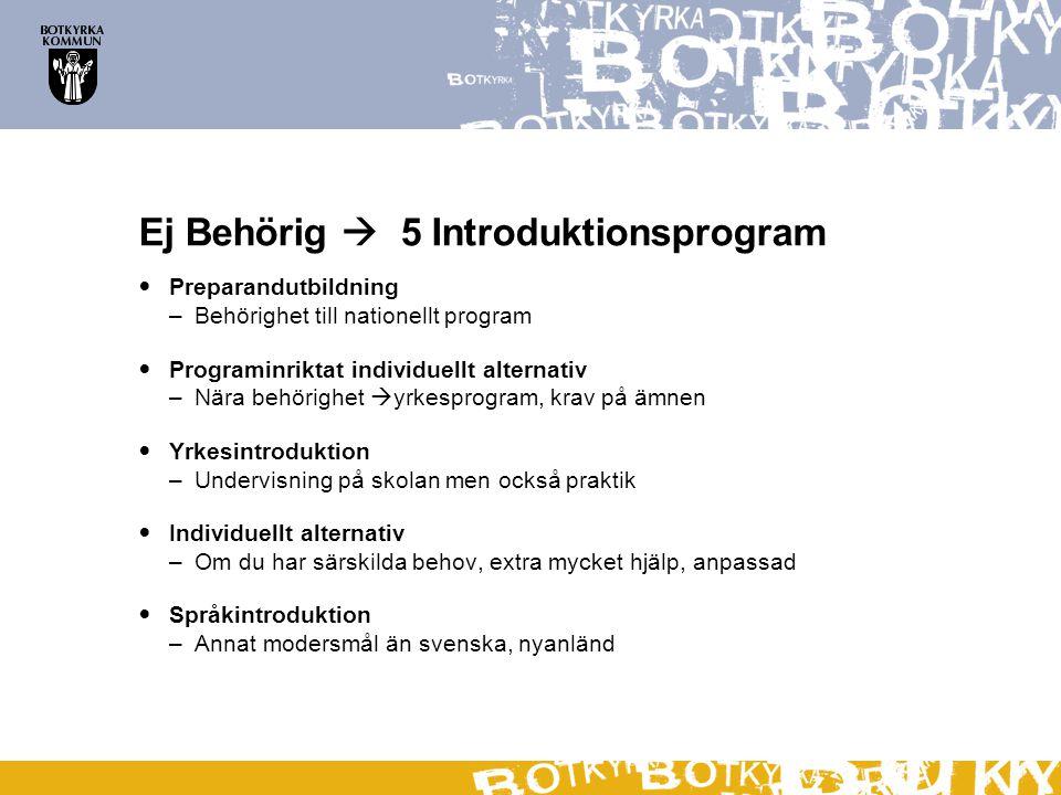 Ej Behörig  5 Introduktionsprogram Preparandutbildning –Behörighet till nationellt program Programinriktat individuellt alternativ –Nära behörighet 