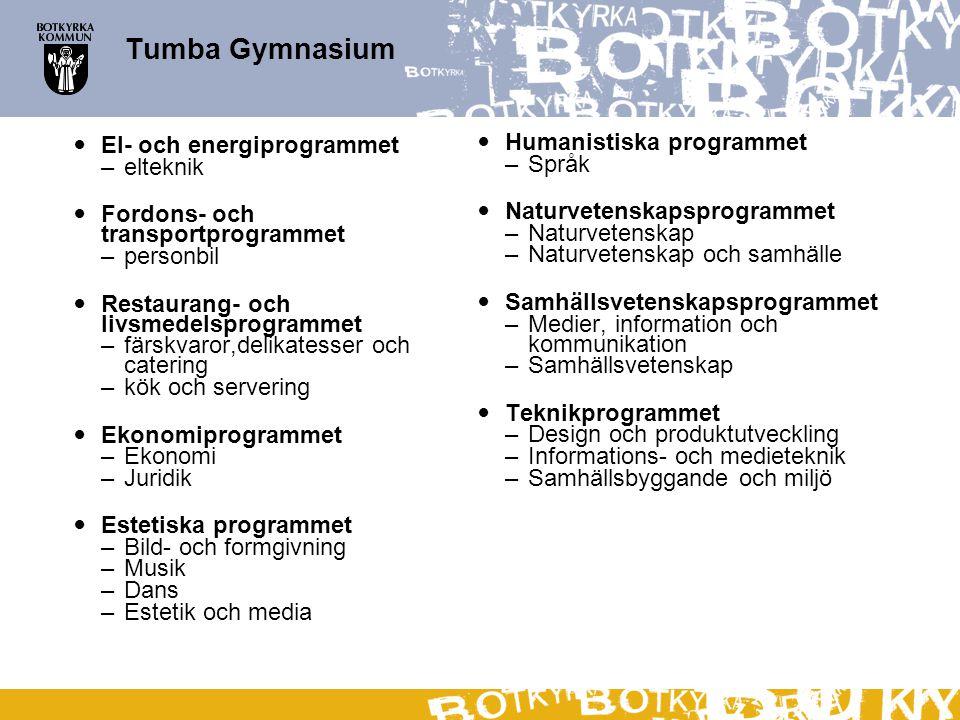 Tumba Gymnasium El- och energiprogrammet –elteknik Fordons- och transportprogrammet –personbil Restaurang- och livsmedelsprogrammet –färskvaror,delika