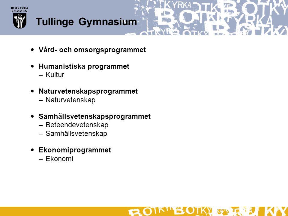 Tullinge Gymnasium Vård- och omsorgsprogrammet Humanistiska programmet –Kultur Naturvetenskapsprogrammet –Naturvetenskap Samhällsvetenskapsprogrammet