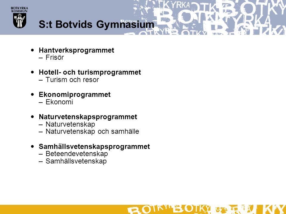 S:t Botvids Gymnasium Hantverksprogrammet –Frisör Hotell- och turismprogrammet –Turism och resor Ekonomiprogrammet –Ekonomi Naturvetenskapsprogrammet