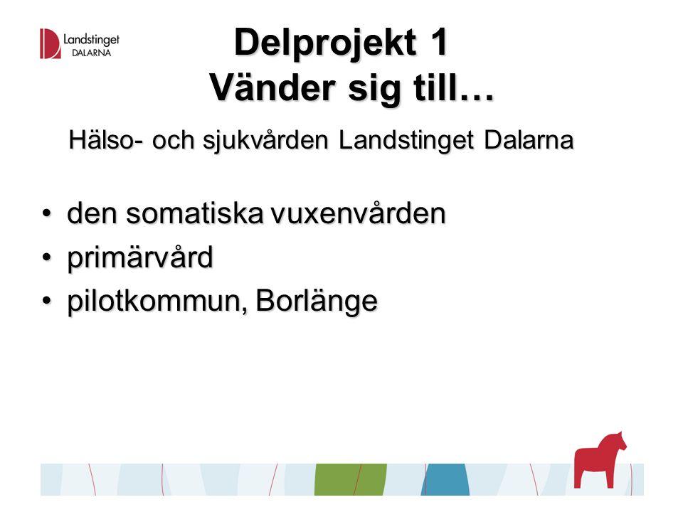 Delprojekt 1 Vänder sig till… Hälso- och sjukvården Landstinget Dalarna den somatiska vuxenvårdenden somatiska vuxenvården primärvårdprimärvård pilotkommun, Borlängepilotkommun, Borlänge