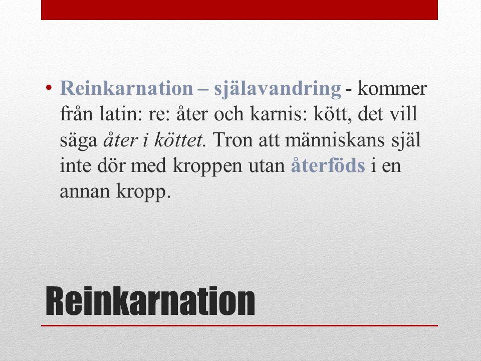 Reinkarnation Reinkarnation – själavandring - kommer från latin: re: åter och karnis: kött, det vill säga åter i köttet. Tron att människans själ inte