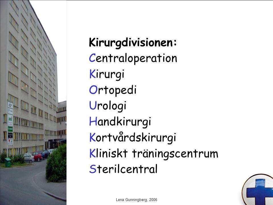 Lena Gunningberg, 2006 Kirurgdivisionen: Centraloperation Kirurgi Ortopedi Urologi Handkirurgi Kortvårdskirurgi Kliniskt träningscentrum Sterilcentral