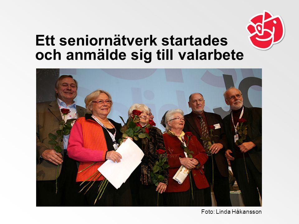 Ett seniornätverk startades och anmälde sig till valarbete Foto: Linda Håkansson