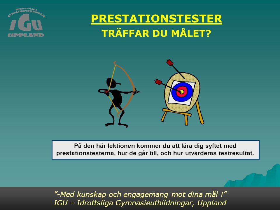 PRESTATIONSTESTER TRÄFFAR DU MÅLET.
