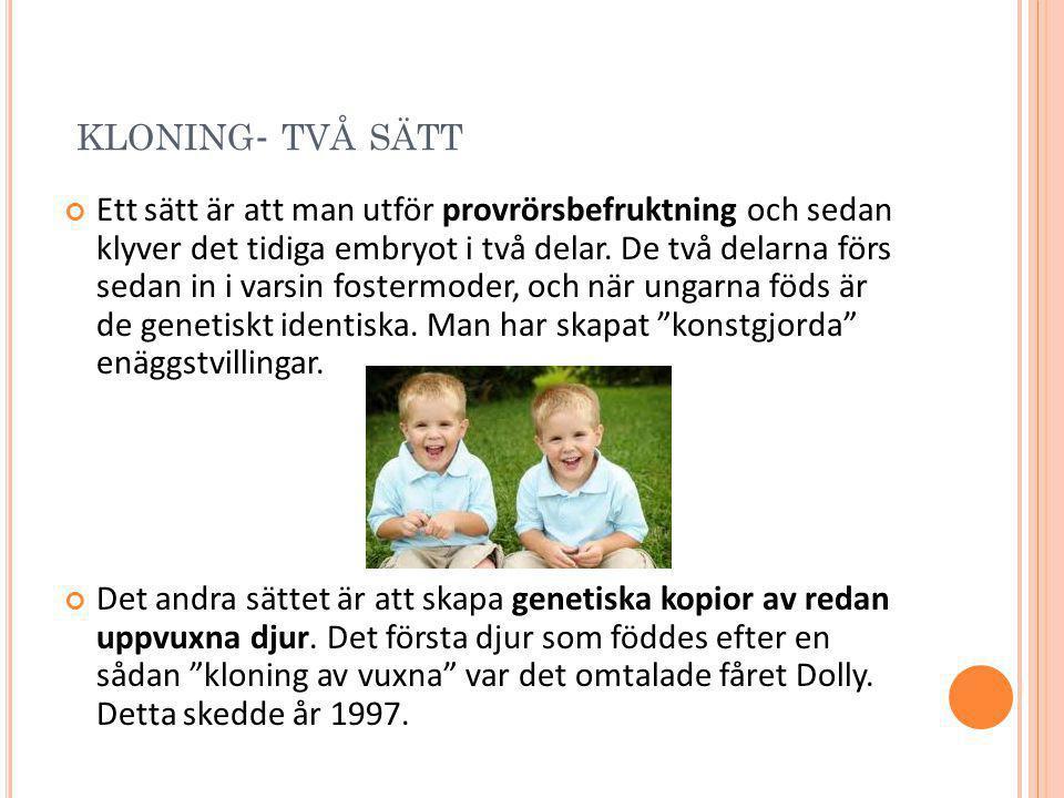KLONING - TVÅ SÄTT Ett sätt är att man utför provrörsbefruktning och sedan klyver det tidiga embryot i två delar. De två delarna förs sedan in i varsi