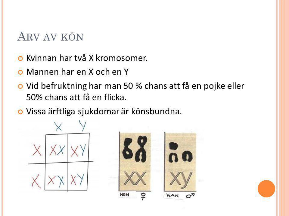A RV AV KÖN Kvinnan har två X kromosomer. Mannen har en X och en Y Vid befruktning har man 50 % chans att få en pojke eller 50% chans att få en flicka