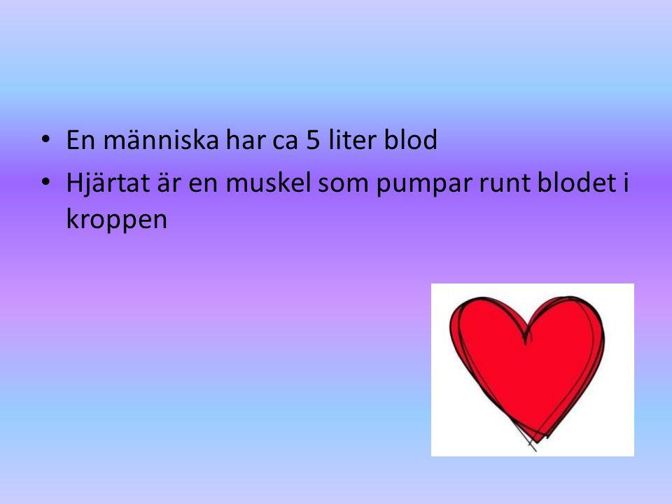 En människa har ca 5 liter blod Hjärtat är en muskel som pumpar runt blodet i kroppen
