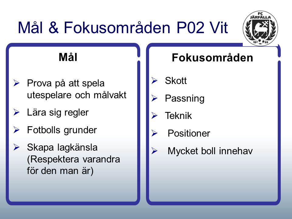 Mål & Fokusområden P02 Vit Mål  Prova på att spela utespelare och målvakt  Lära sig regler  Fotbolls grunder  Skapa lagkänsla (Respektera varandra för den man är) Fokusområden  Skott  Passning  Teknik  Positioner  Mycket boll innehav