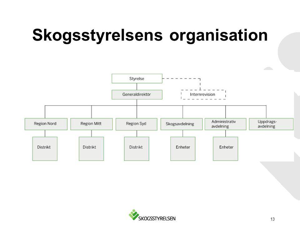 Skogsstyrelsens organisation 13