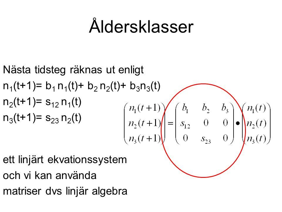 Åldersklasser Nästa tidsteg räknas ut enligt n 1 (t+1)= b 1 n 1 (t)+ b 2 n 2 (t)+ b 3 n 3 (t) n 2 (t+1)= s 12 n 1 (t) n 3 (t+1)= s 23 n 2 (t) ett linj