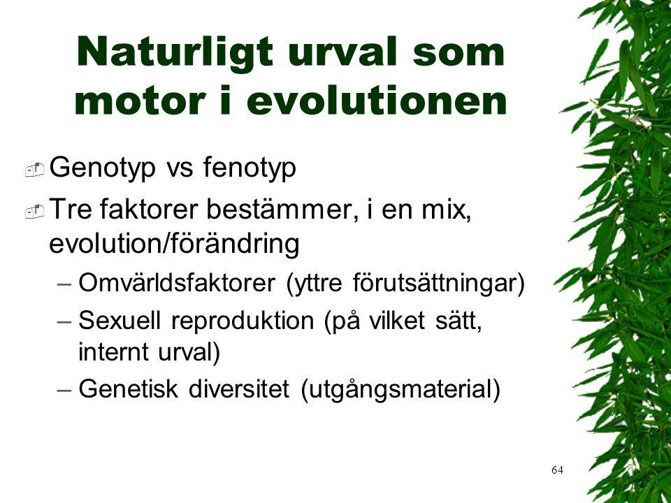 63 Naturligt urval i kombination med genetik  Idag kombinerar vi evolution och naturligt urval med genetik och DNA och kan beskriva hur de 'bra' egen