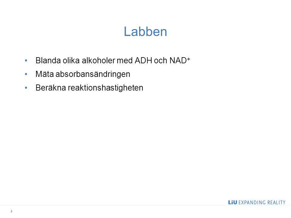 Labben i korthet 1.Reaktionen utan enzym: NAD + + EtOH, blanda -> mät 2.Reaktionen med enzym: NAD + + EtOH + ADH, blanda snabbt -> mät 3.Upprepa för reproducerbarhet 4.Upprepa (2) med olika volym ADH 5.Upprepa med olika alkoholer 14