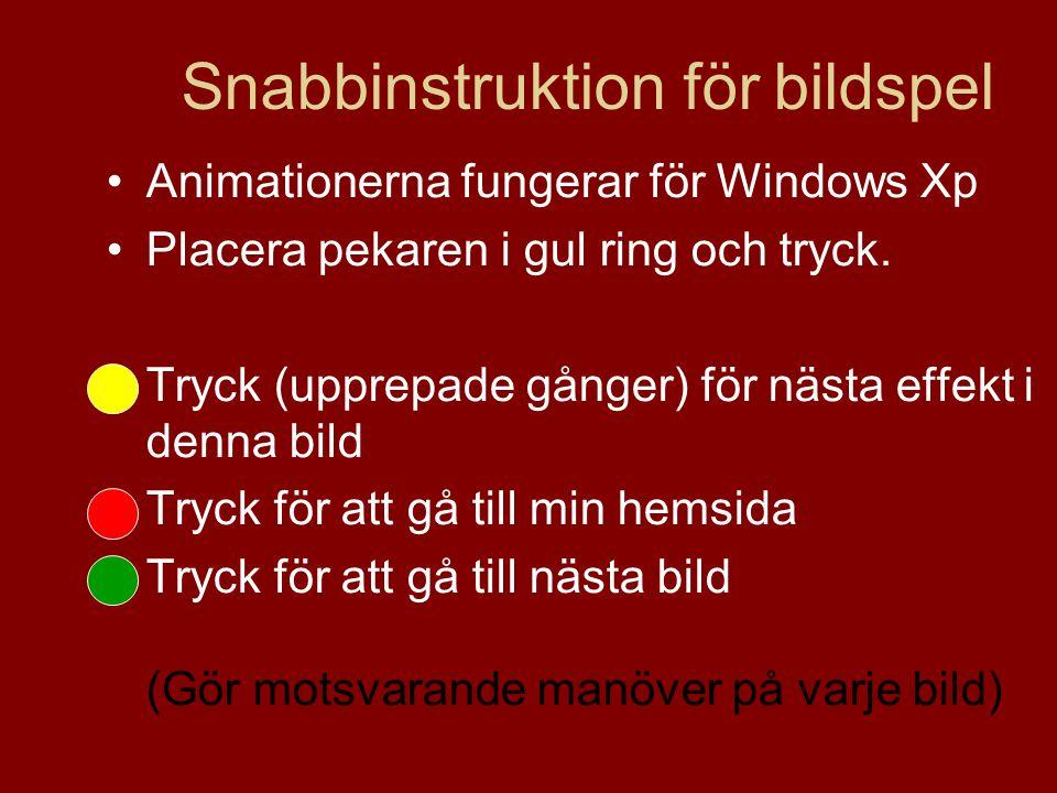 Snabbinstruktion för bildspel Animationerna fungerar för Windows Xp Placera pekaren i gul ring och tryck.