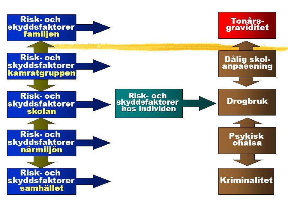 Risk- och skyddsfaktorerfamiljen Risk- och skyddsfaktorerskolan Risk- och skyddsfaktorer kamratgruppen Risk- och skyddsfaktorernärmiljön Risk- och sky