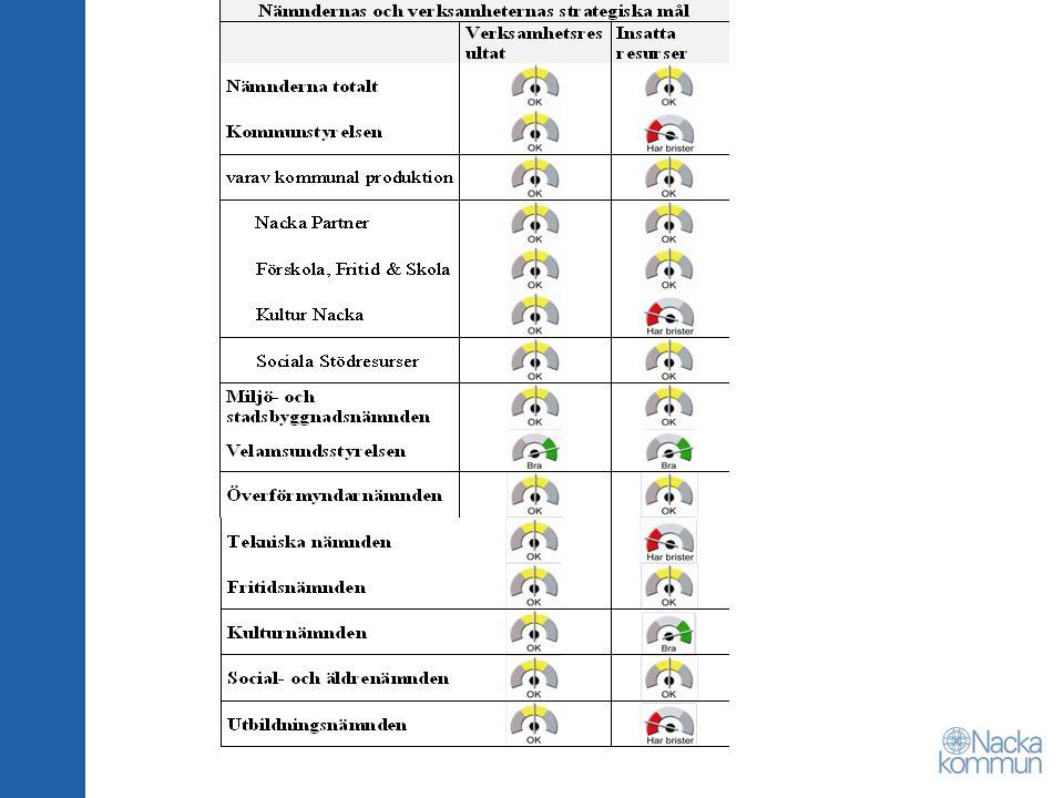 Resultaträkning månadsbokslut mars 2010
