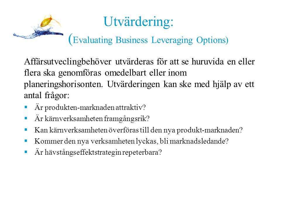 PPT 11-13 Utvärdering: ( Evaluating Business Leveraging Options) Affärsutveclingbehöver utvärderas för att se huruvida en eller flera ska genomföras omedelbart eller inom planeringshorisonten.