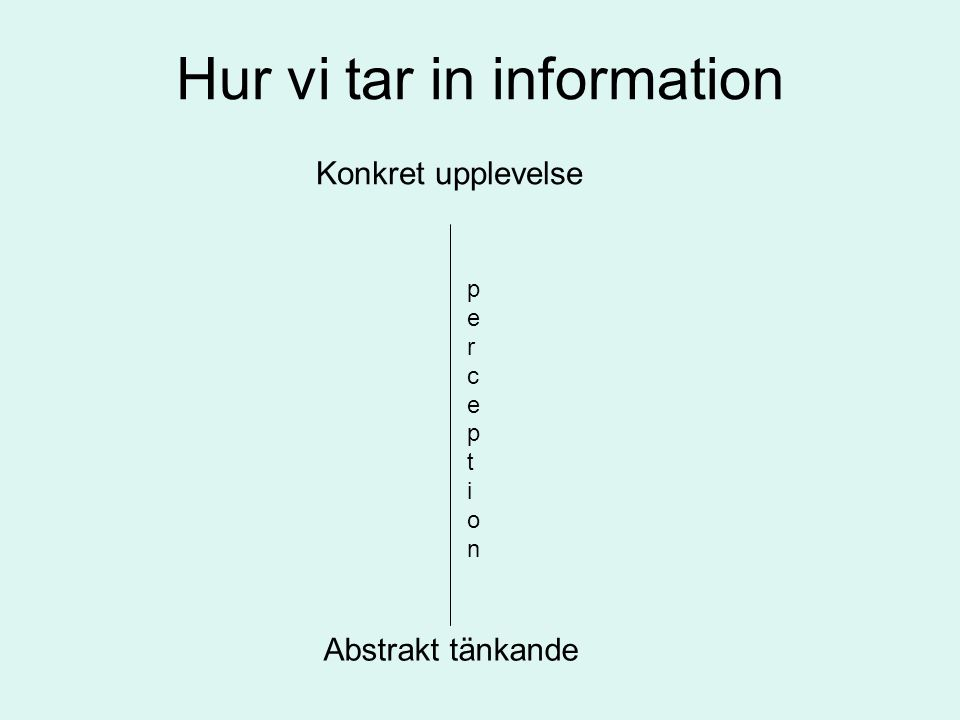 Hur vi tar in information Konkret upplevelse Abstrakt tänkande perceptionperception