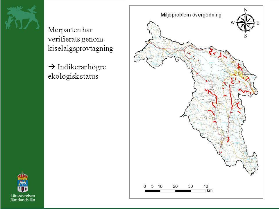 Merparten har verifierats genom kiselalgsprovtagning  Indikerar högre ekologisk status