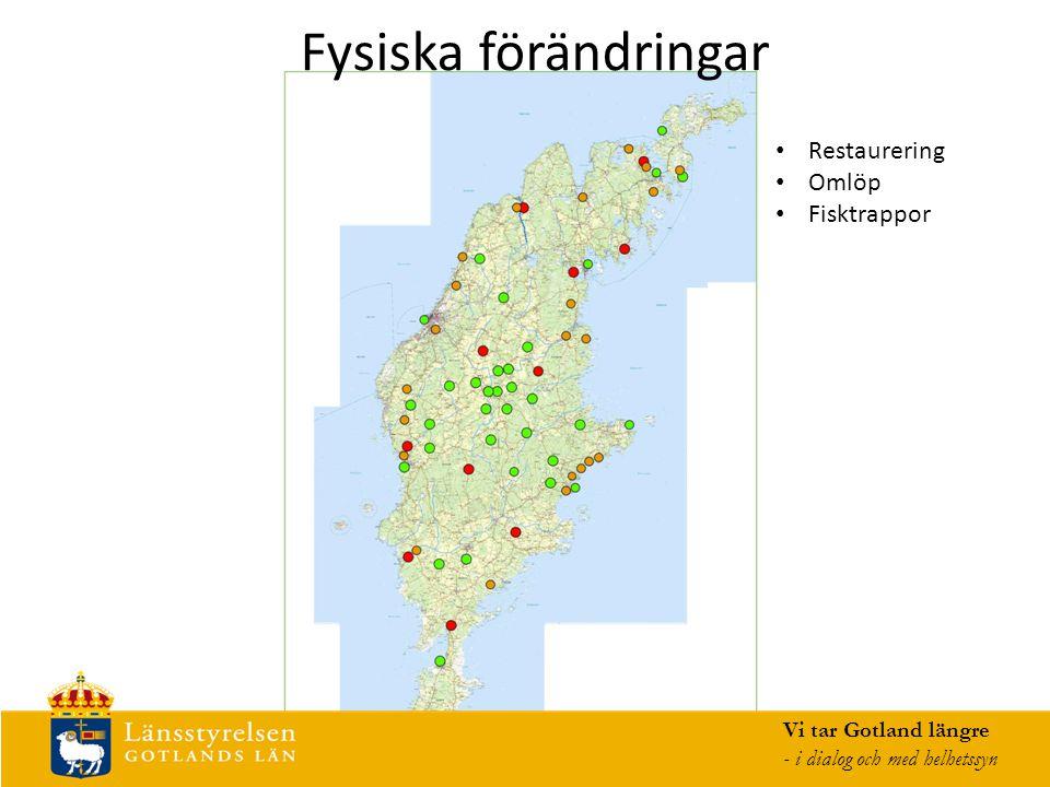 Fysiska förändringar Vi tar Gotland längre - i dialog och med helhetssyn Restaurering Omlöp Fisktrappor