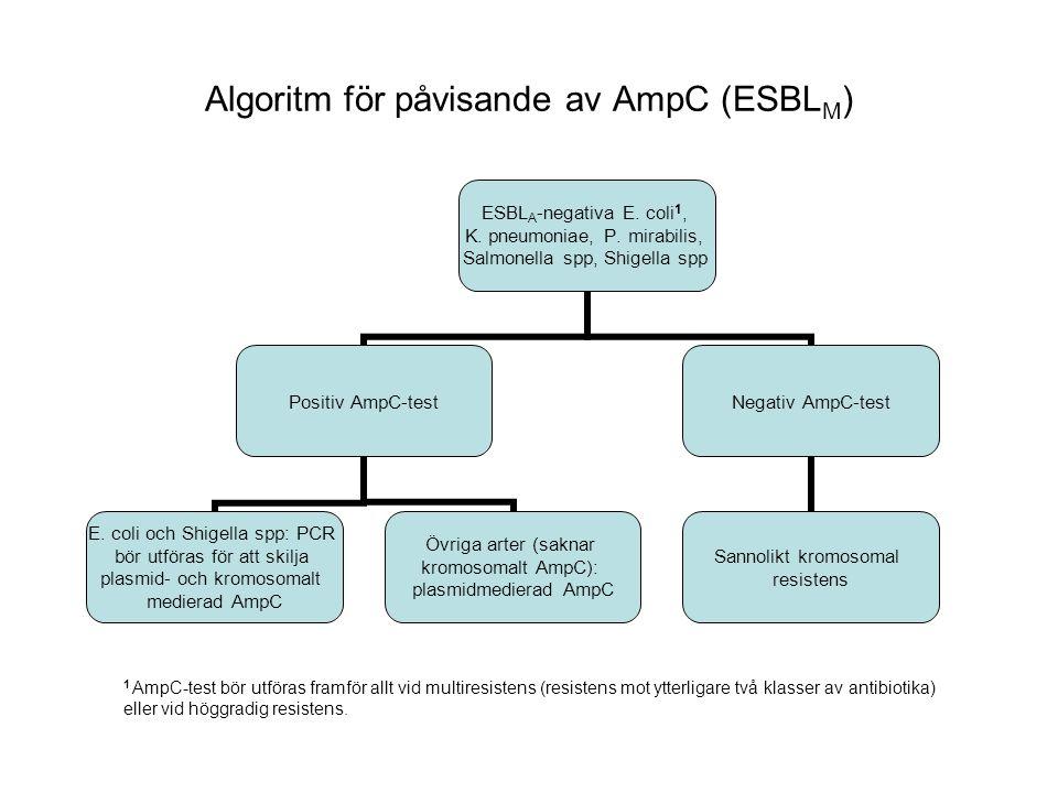 Algoritm för påvisande av AmpC (ESBL M ) ESBLA-negativa E.