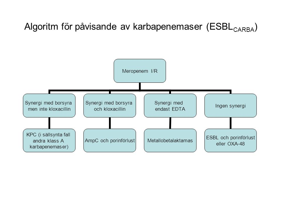 Meropenem I/R Synergi med borsyra men inte kloxacillin KPC (i sällsynta fall andra klass A karbapenemaser) Synergi med borsyra och kloxacillin AmpC och porinförlust Synergi med endast EDTA Metallobetalaktamas Ingen synergi ESBL och porinförlust eller OXA-48 Algoritm för påvisande av karbapenemaser (ESBL CARBA )