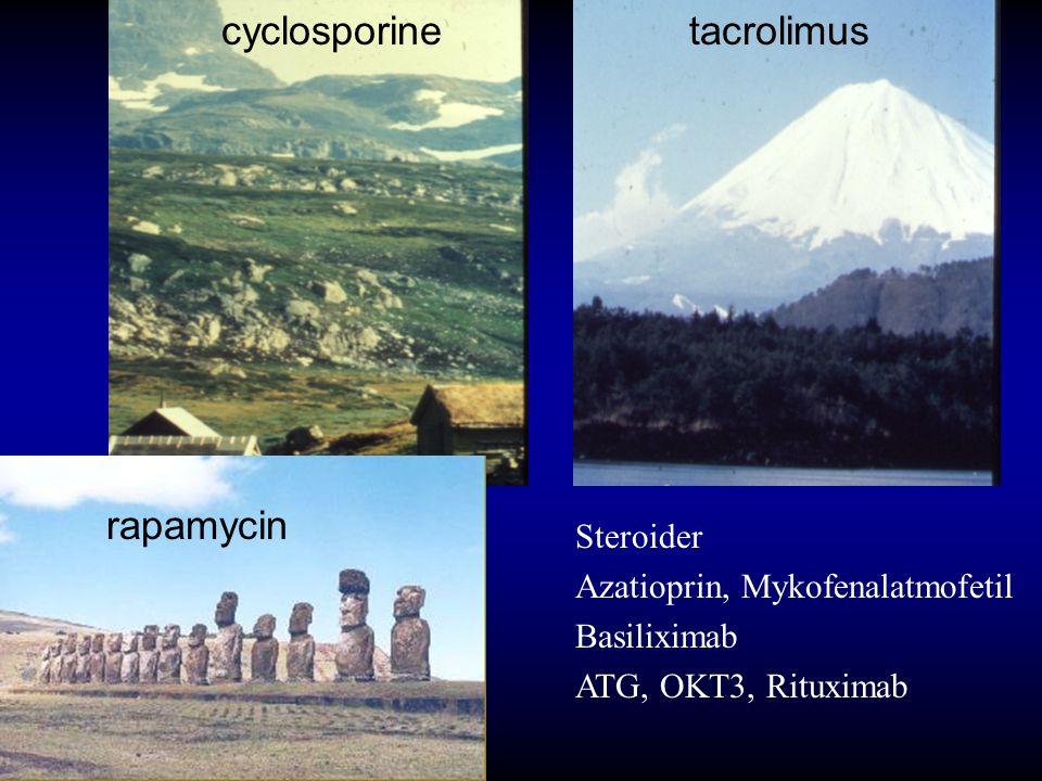 cyclosporine rapamycin tacrolimus Steroider Azatioprin, Mykofenalatmofetil Basiliximab ATG, OKT3, Rituximab