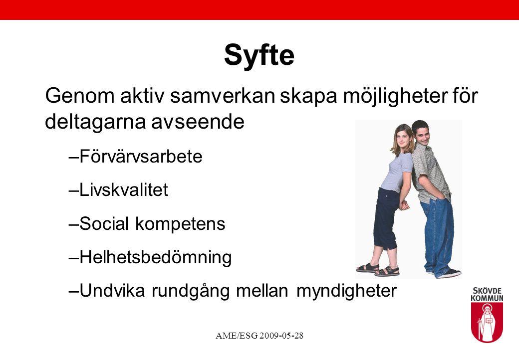 AME/ESG 2009-05-28 Syfte Genom aktiv samverkan skapa möjligheter för deltagarna avseende –Förvärvsarbete –Livskvalitet –Social kompetens –Helhetsbedömning –Undvika rundgång mellan myndigheter