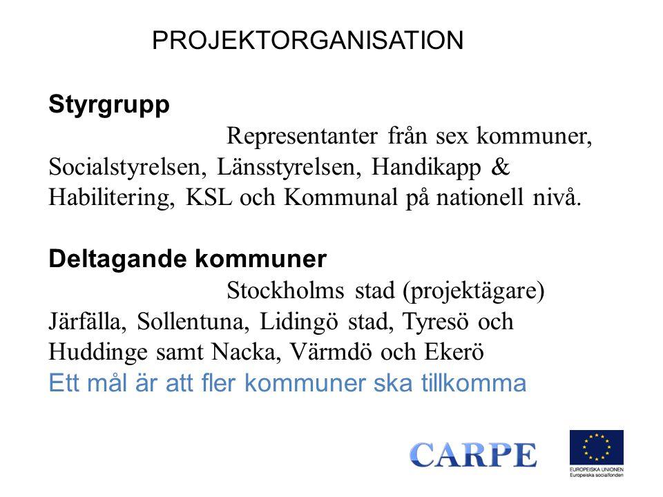 Styrgrupp Representanter från sex kommuner, Socialstyrelsen, Länsstyrelsen, Handikapp & Habilitering, KSL och Kommunal på nationell nivå.