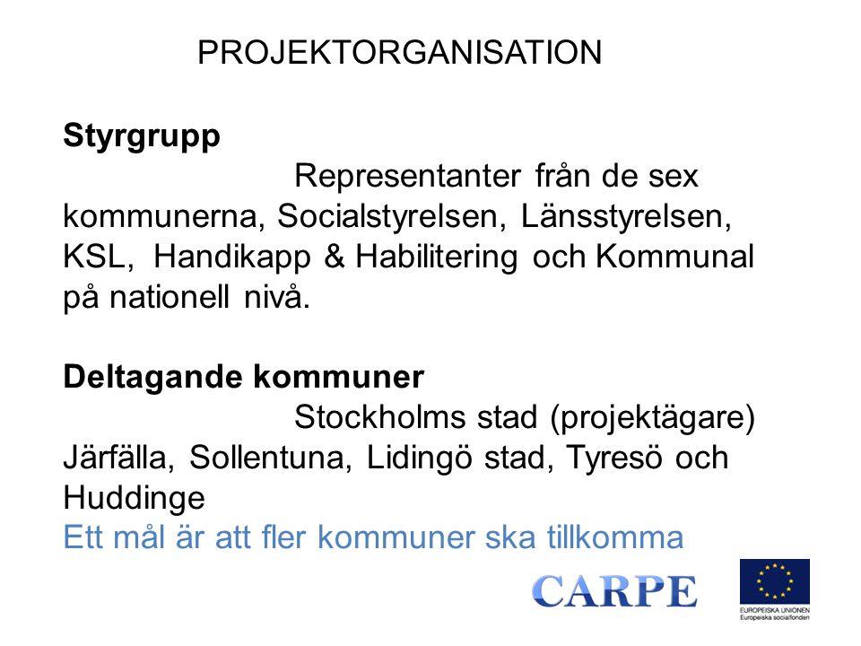 Styrgrupp Representanter från de sex kommunerna, Socialstyrelsen, Länsstyrelsen, KSL, Handikapp & Habilitering och Kommunal på nationell nivå.