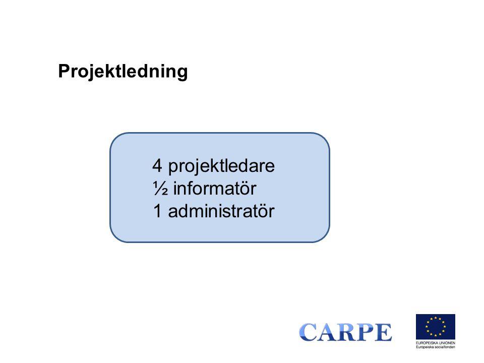 4 projektledare ½ informatör 1 administratör Projektledning