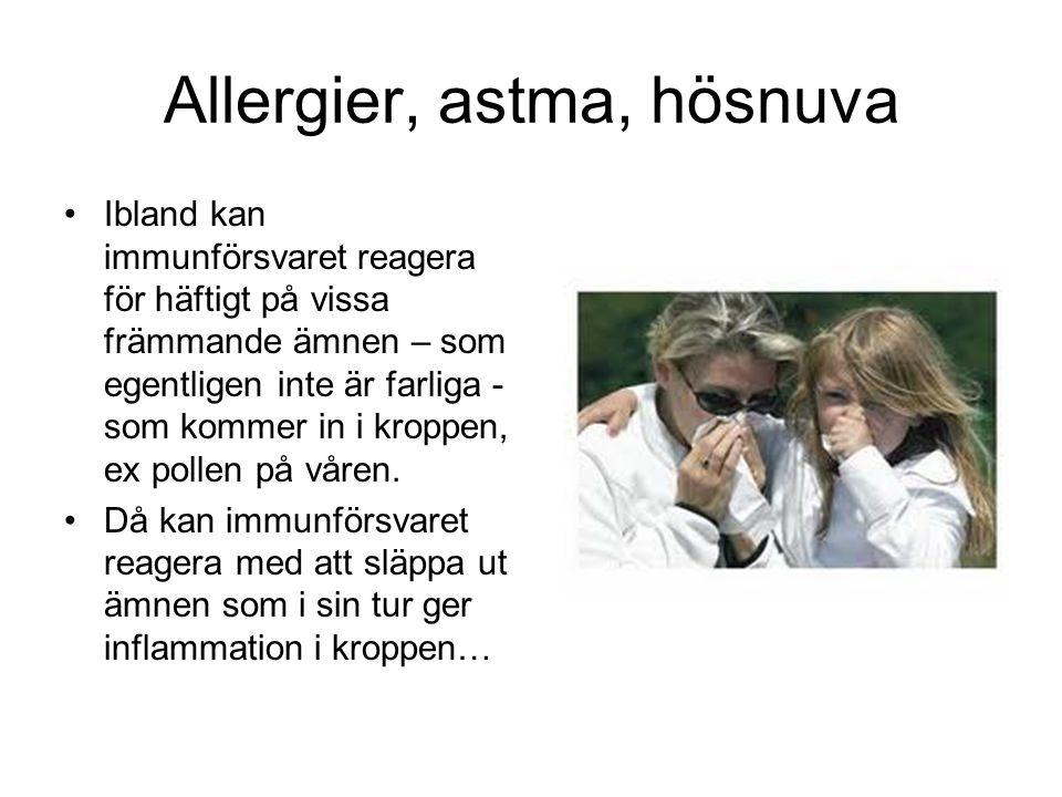 Allergier, astma, hösnuva Ibland kan immunförsvaret reagera för häftigt på vissa främmande ämnen – som egentligen inte är farliga - som kommer in i kroppen, ex pollen på våren.