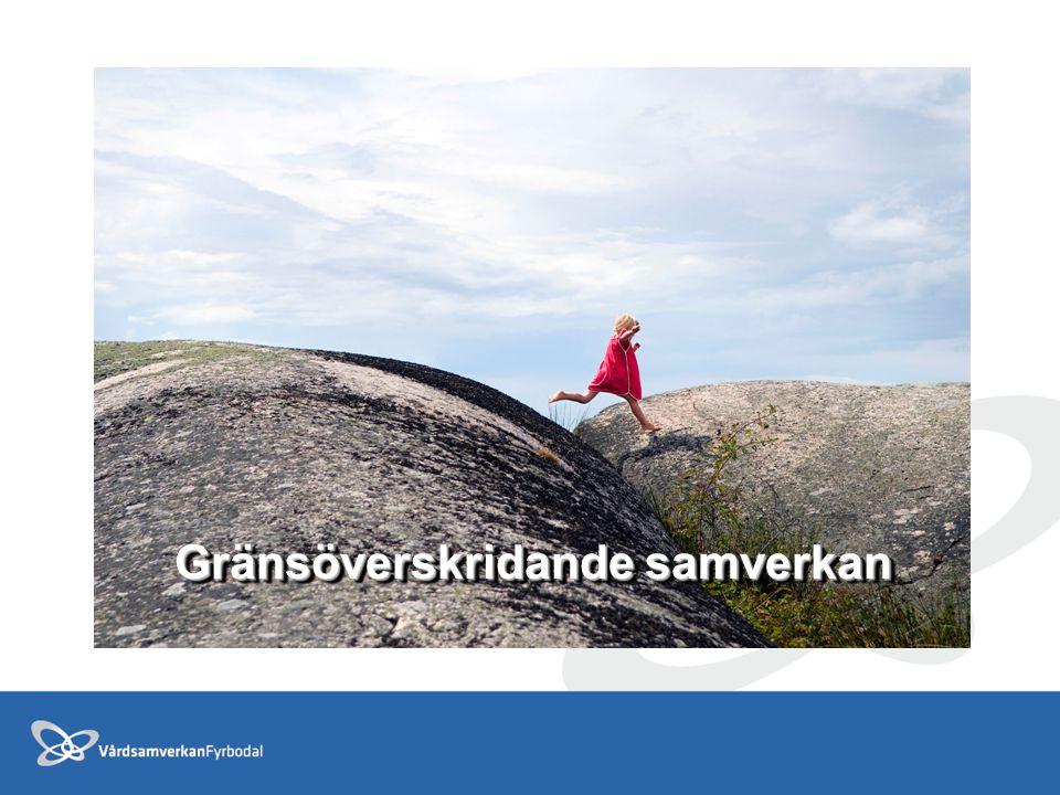Uppföljning 2012 Temporär förlängning av samverkansavtal 2009-2011 2012; - Omtag av samarbete och samverkan inom Vårdsamverkan Fyrbodal -Statliga satsningar Bättre liv för sjuka äldre -Utbildning inom psykiatri