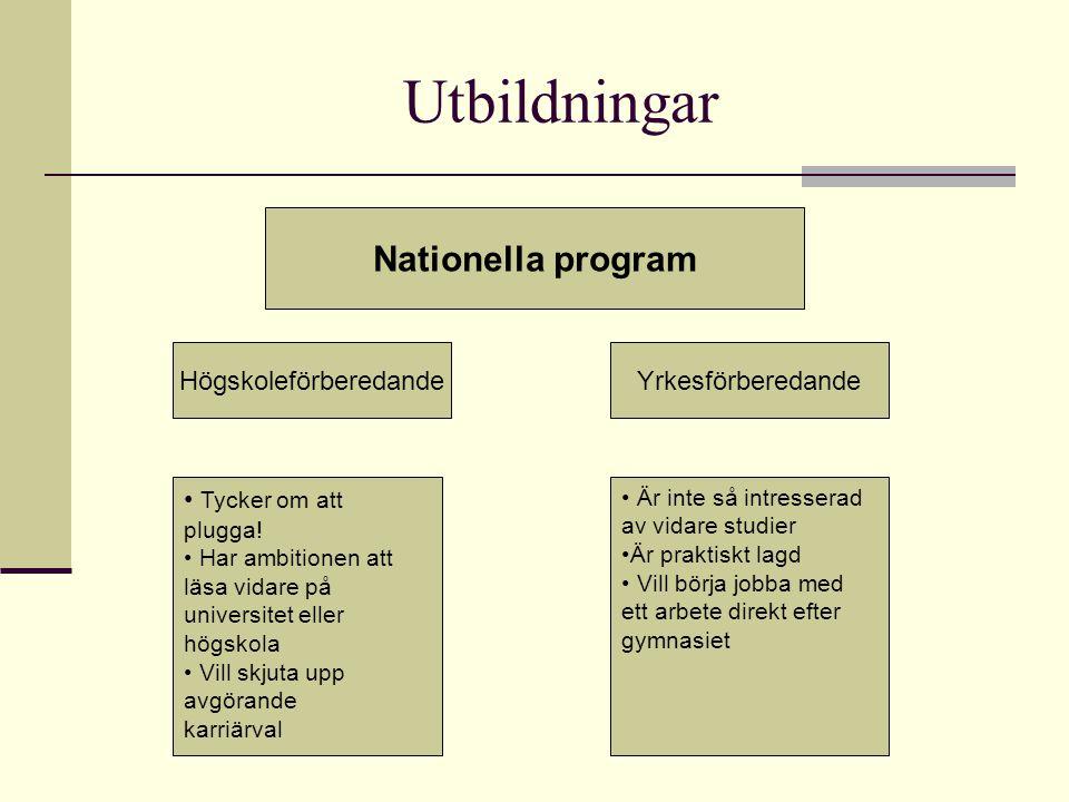 Utbildningar Nationella program HögskoleförberedandeYrkesförberedande Tycker om att plugga! Har ambitionen att läsa vidare på universitet eller högsko